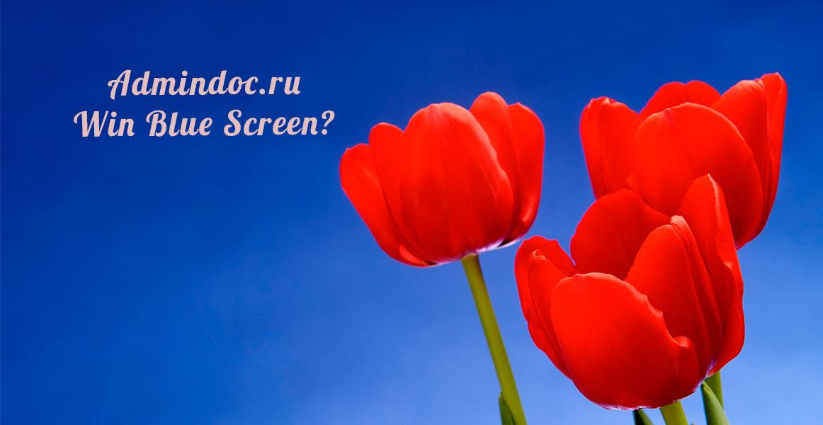 admindoc-win-blue-screen